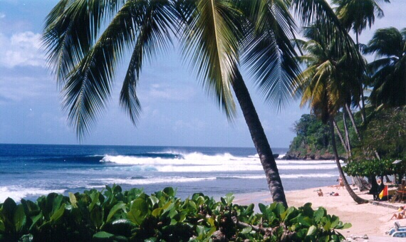 beach in Tobago
