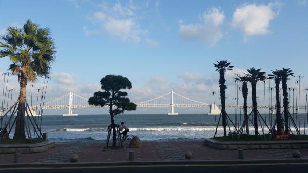 teach and travel, teach english in Korea, teach aclipse, aclipse, chungdahm