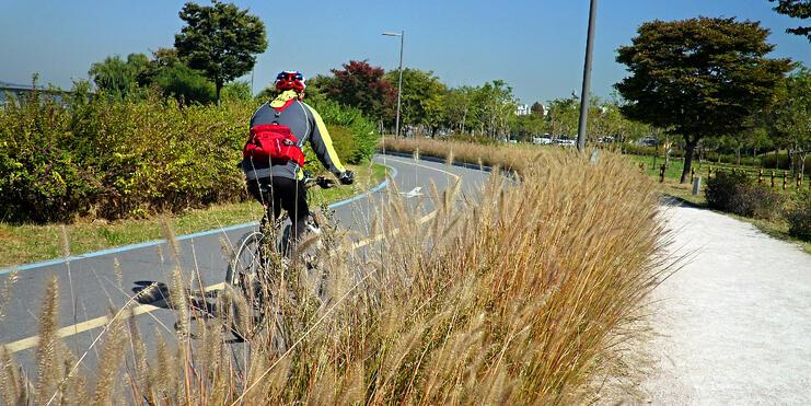 Han cyclist