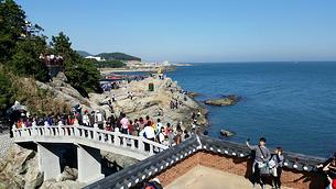 teach and travel, teach english in south korea, teach aclipse, chungdahm