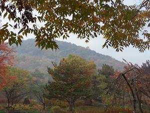 teach aclipse, teach and travel, teach south korea