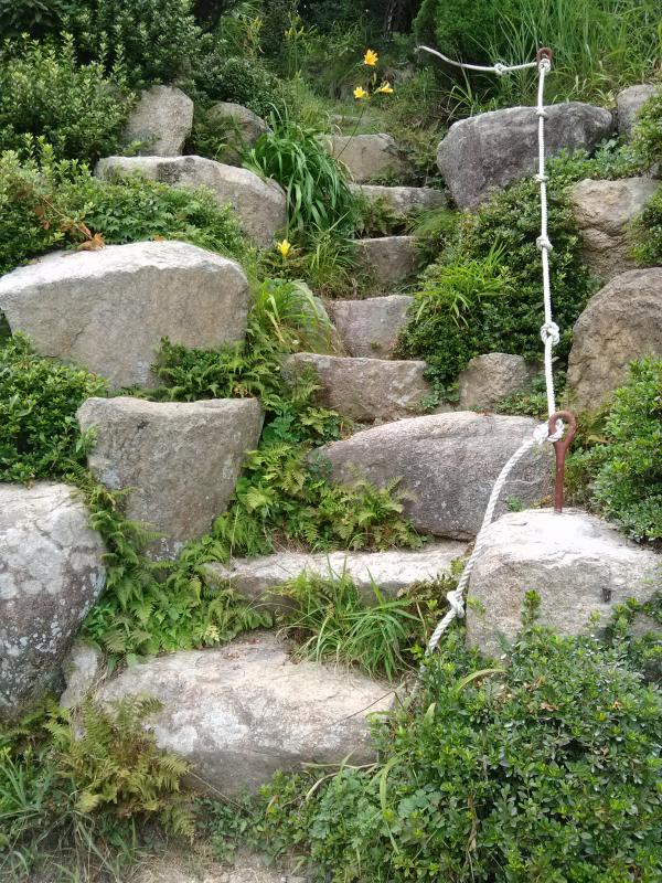 Hiking Trail #hiking #parks #busan #korea