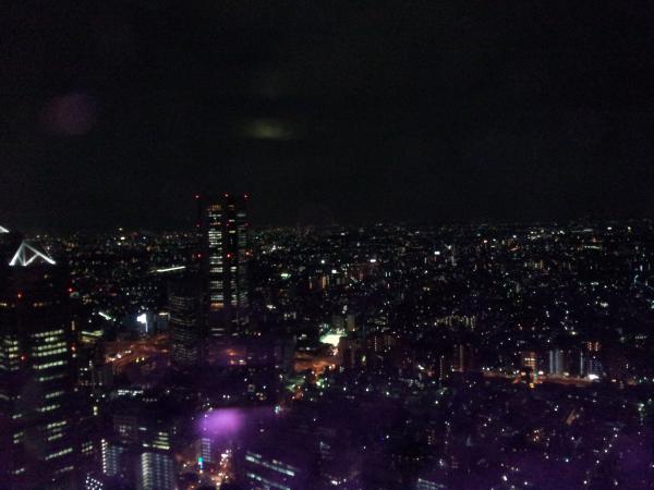 View of Tokyo at night
