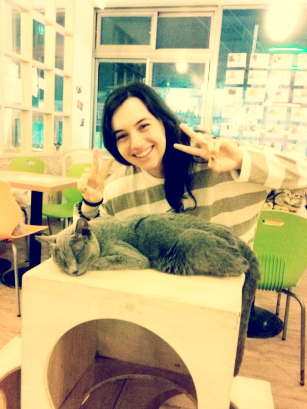 #cats #cafe #busan