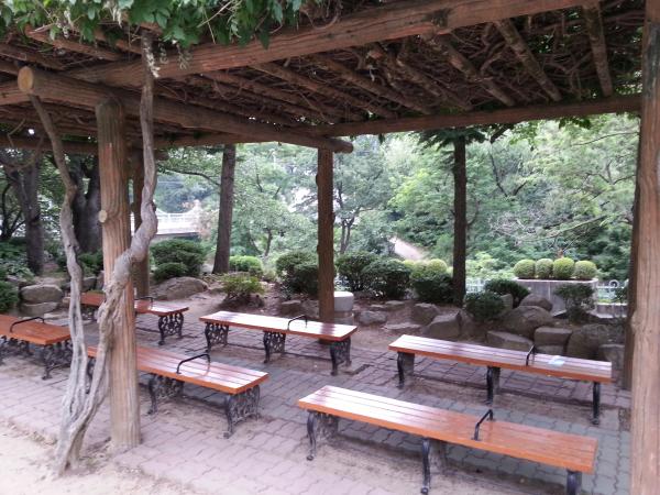 Teach English in Korea, Teach Aclipse, Chungdahm, Duryu Park