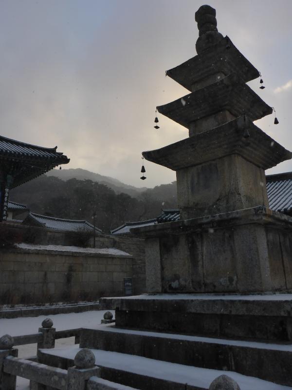 #templestay #haeinsa #family #korea