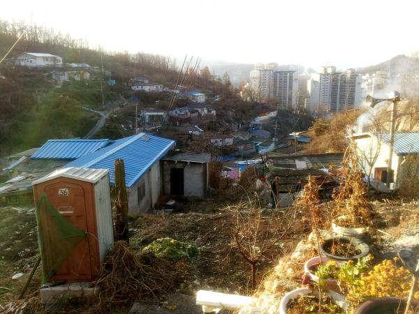Ant Village Seoul