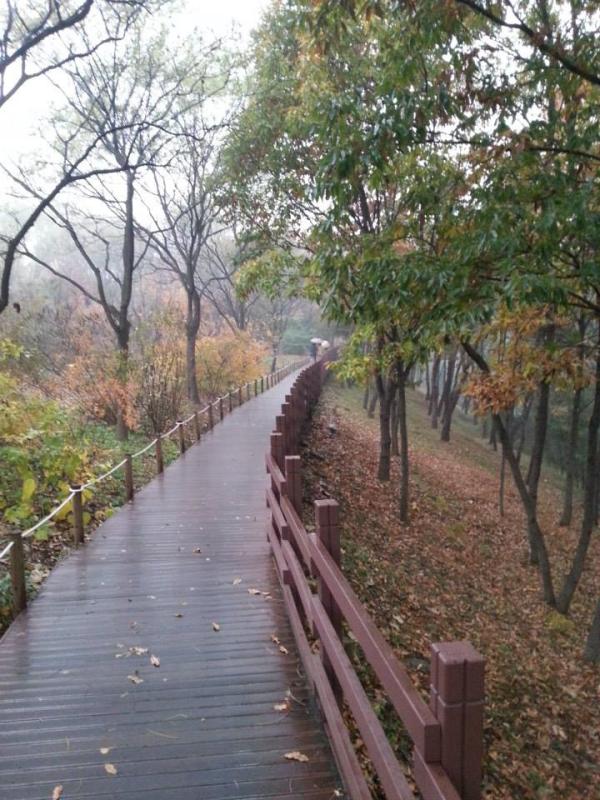 teach and travel Korea, teach English in Soouth Korea, teach Aclipse, CDI