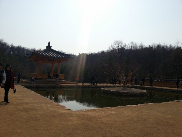 teach and travel korea, teach Aclipse, CDI, chung dahm, living in South Korea, things to do in south korea
