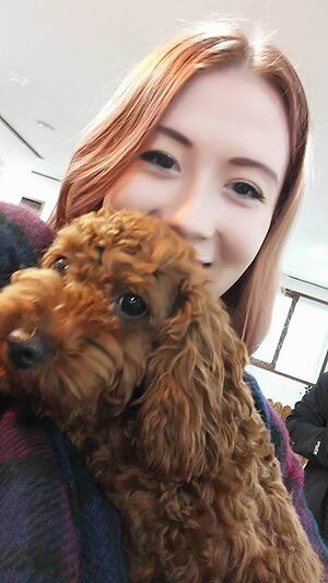 puppy cafe in Busan